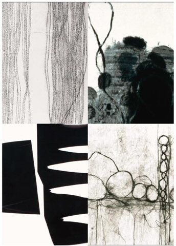 Past Exhibition - The Poetics of drawing with Arat, de Chiara, Holton and Jackson